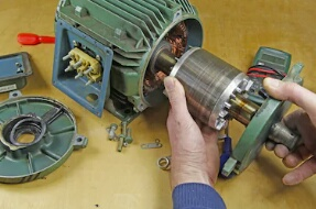 Standard type Induction Motors
