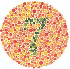 gambar contoh tes buta warna dan jawabannya