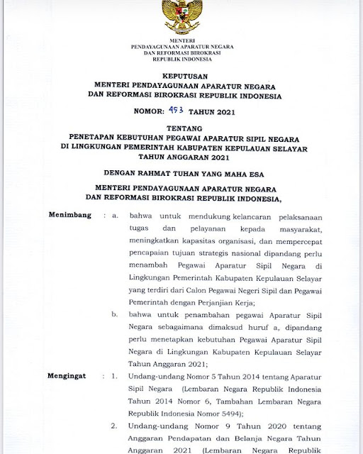 Formasi ASN 2021 Pemerintah Kabupaten Kepulauan Selayar