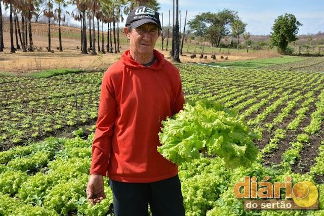 Com cultivo de legumes, agricultor da região de Cajazeiras ajuda a formar as filhas e se emociona