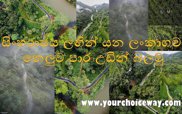 සිංහරාජය ලඟින් යන ලංකාගම - නෙලුව පාර උඩින් බලමු 🌳🌿🍃♥️ (Lankagama) - Your Choice Way