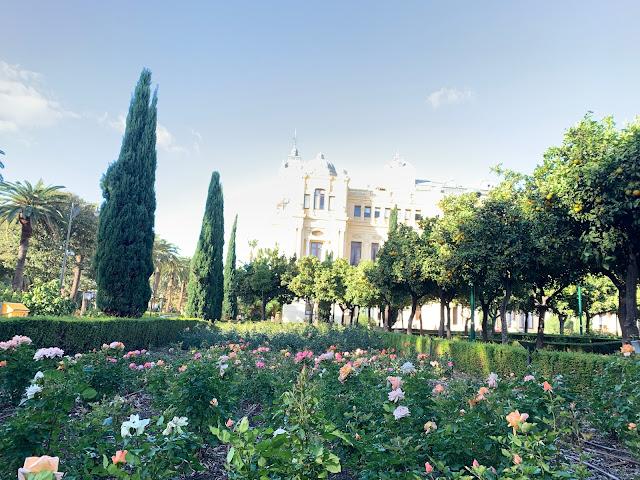 Cosa fare a Malaga città dell'Andalusia