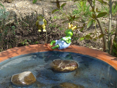 Clean water in bird bath with rocks for bird support