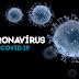 O Piauí agora soma 11.559 casos confirmados e 398 mortes de coronavírus