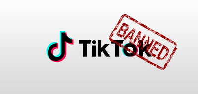 Pakistan banned TikTok over immoral content - Techmobileworld