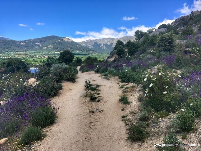ruta de senderismo en Navacerrada