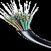 Steun voor netwerk van glasvezel in Oss