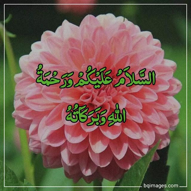 beautiful assalamualaikum image