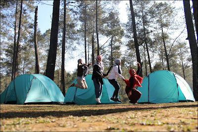 Camping ground Orchid Forest Cikole Lembang