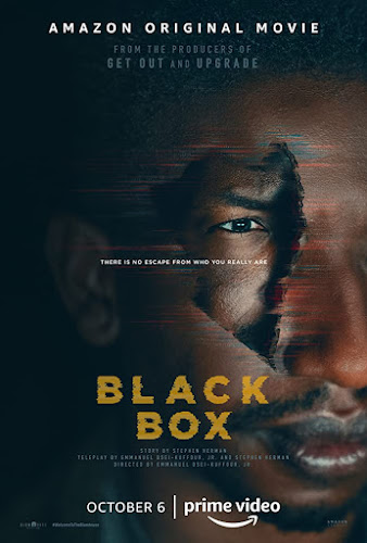 Black Box (Web-DL 720p Dual Latino / Ingles) (2020)
