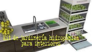 El kit de jardinería hidropónica para interiores te permite cultivar verduras durante todo el año