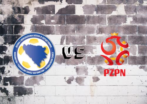Bosnia-Herzegovina vs Polonia  Resumen