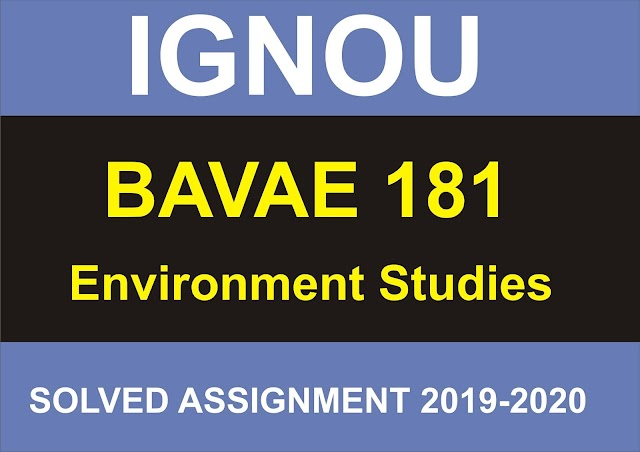 BAVAE 181 Solved Assignment