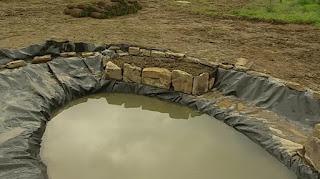New pond area