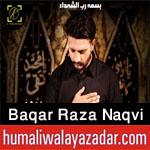 https://aliwalayazadar.blogspot.com/2020/08/baqar-raza-naqvi-nohay-2021.html