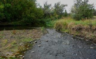 Клебан-Бык. Место слияния рек Бычок и Кривой Торец