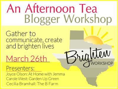 Brighten Blogger Workshop