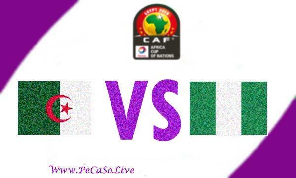 مشاهدة مباراة الجزائر ونيجيريا بث مباشر 14-7-2019 Algeria vs Nigeria Live