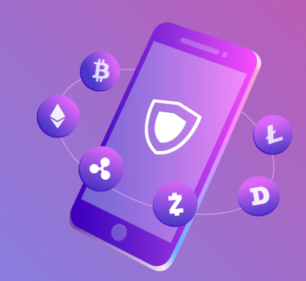 How to secure Assets in a Cryptocurrency wallet?