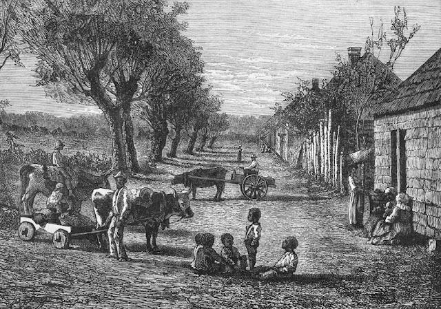 Cotton Plantations 1800s