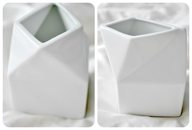 mlecznik kartonik