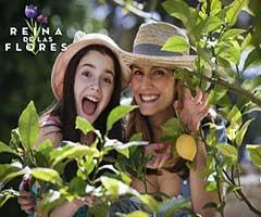 Ver telenovela reina de las flores capítulo 22 completo online