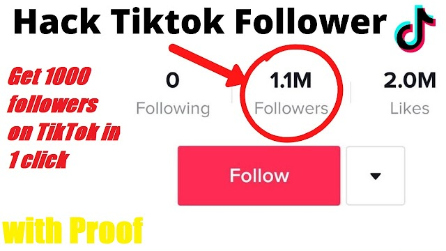 Get 1k followers on TikTok with one click.