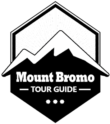 mt bromo tour guide
