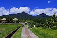 Area masuk Jatiluwih Rice Terrace Bali