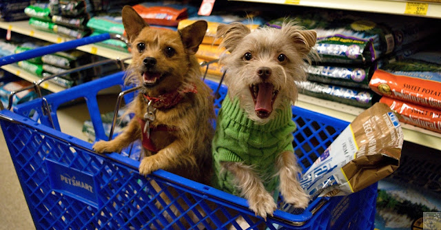 Jada and Bailey at PetSmart with Natural Balance