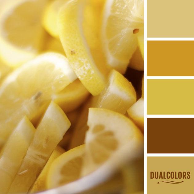 color_paleta_112