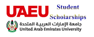 UAE Duabi United Arab Emirates University National Student Scholarships