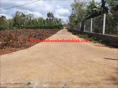 Bán đất Buôn Kotam xã Ea Tu Tp Buôn Ma Thuột 850 triệu