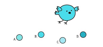 Q 8. Which of these berries did color bird eat?