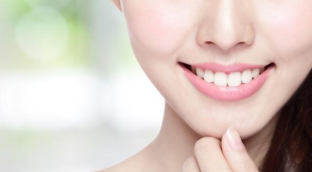 Pengertian, Fungsi, Jenis dan Bagian-Bagian Gigi