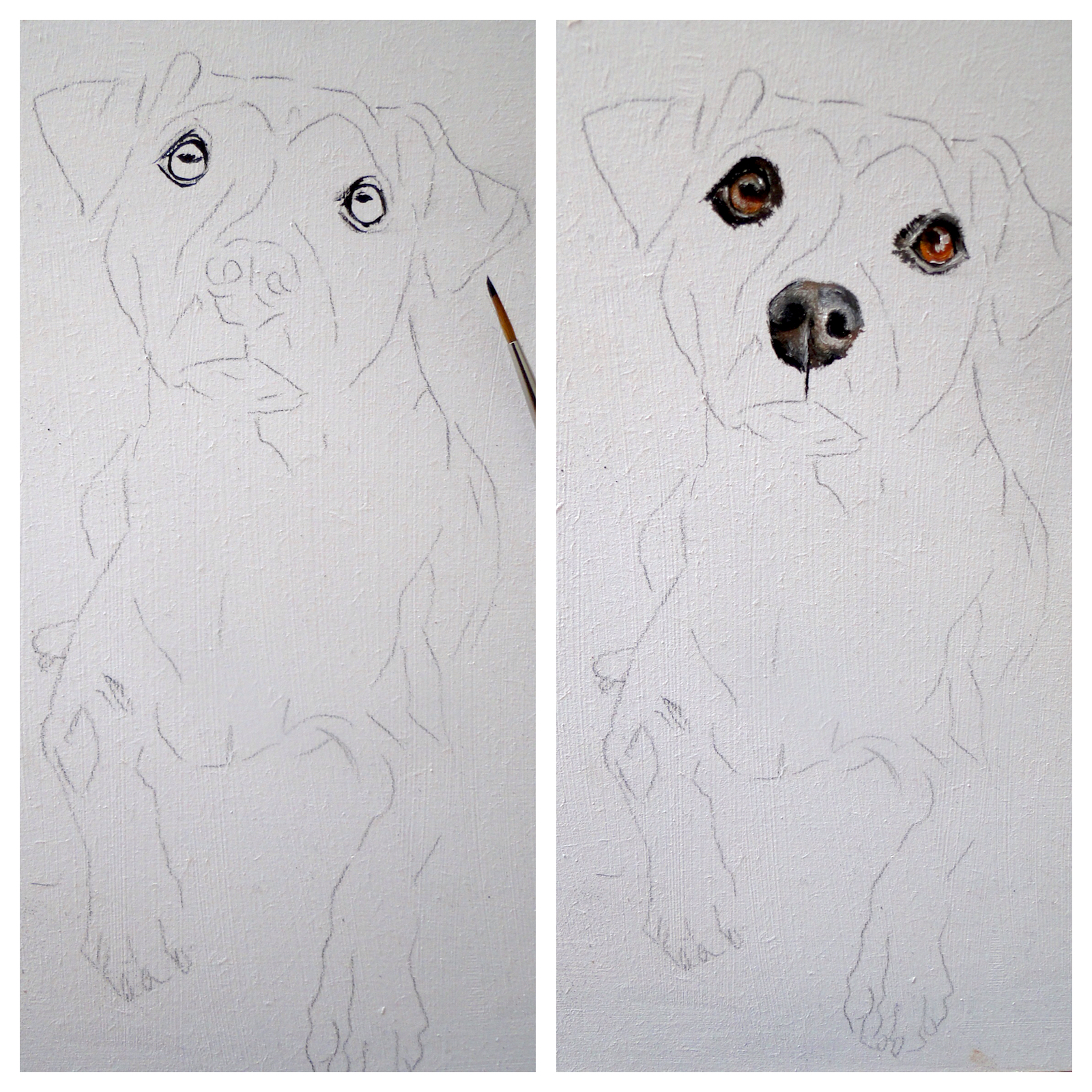 demonstration of a jack russell painting, stage 1, a pet portrait by karen, animal artist