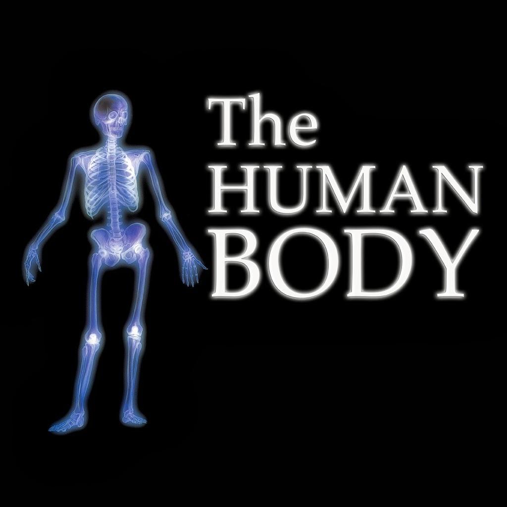 English Language Resources My Body And My Senses