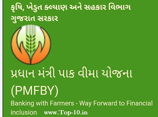 Pradhanmantri Fasal Vima Yojna Online Application Start For 2019 At Ikhedut.Gujarat.Gov.In:Pakdhiran Online Araji Start
