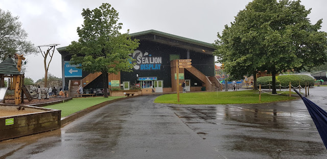 Knowsley Safari in the pouring rain looking at Sea Lion display building