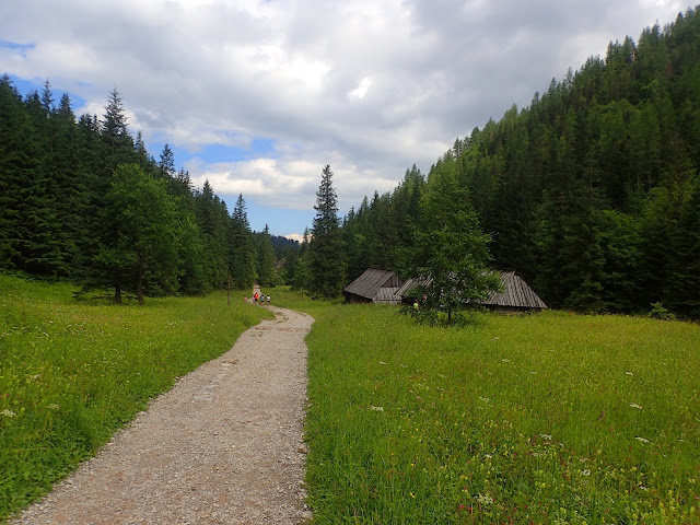 Żółty szlak Doliną Jaworzynki
