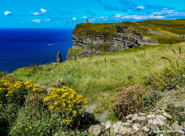 Paisagem dos Cliffs of Moher, Irlanda