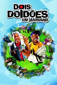 Dois Doidões em Harvard Torrent – WEB-DL 720p/1080p Dual Áudio