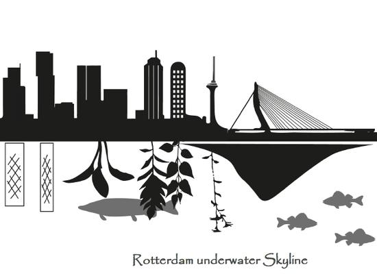 Illustratie cover Onderwaternatuur Rotterdam