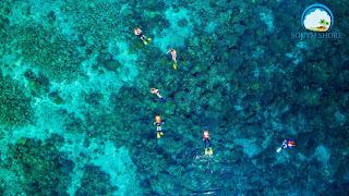 Snorkeling in the waters off Moalboal Cebu