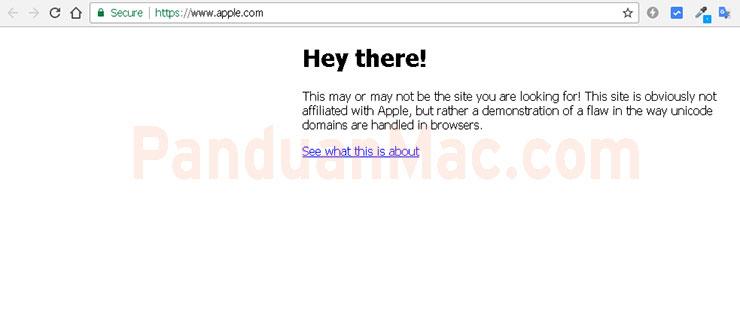 Phising Ini Tidak Terdeteksi di Chrome, Firefox dan Opera