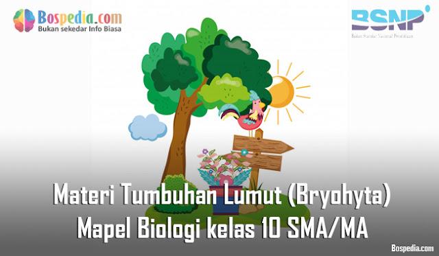 Materi Tumbuhan Lumut (Bryohyta) Mapel Biologi kelas 10 SMA/MA