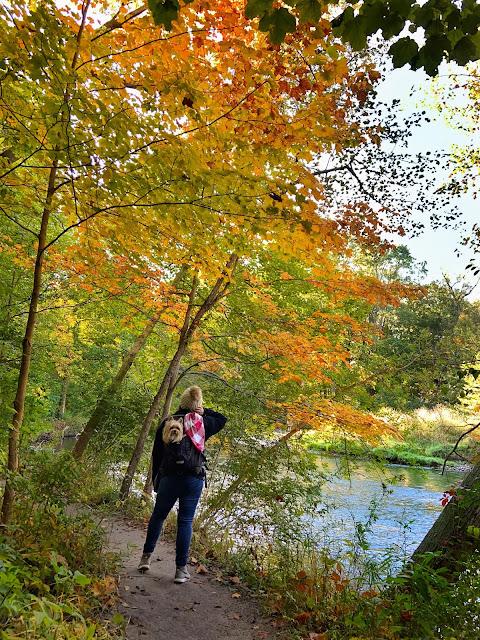fall hiking necessities