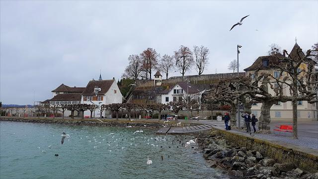 Visitare Rapperswill in Svizzera