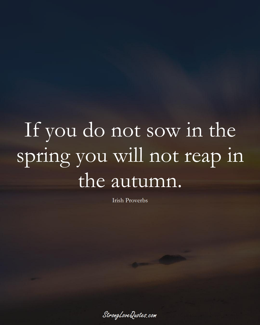 If you do not sow in the spring you will not reap in the autumn. (Irish Sayings);  #EuropeanSayings
