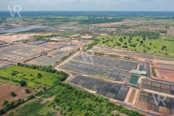 VR Global Property ขายที่ดิน 200 ไร่ ตำบลพังเทียม อำเภอพระทองคำ จังหวัดนครราชสีมา